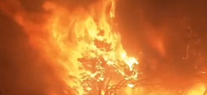 California's Deadliest Fires Could Have Been Mitigated By Prevention